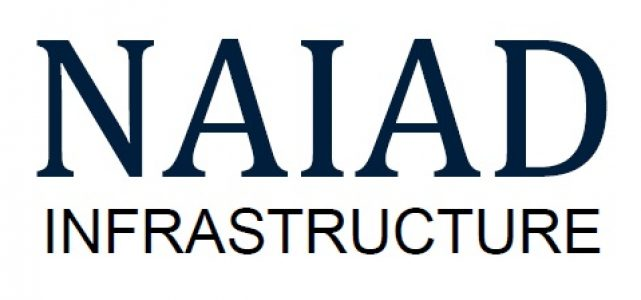 Logo for Naiad Infrastructure Cost Consultancy and Modelling Services